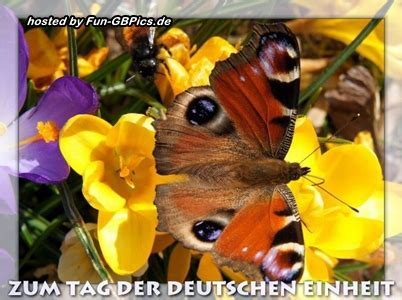 oktober tag der deutschen einheit gaestebuch bilder