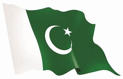 Pakistan Flag Flags Vip Kinds Printable Exporters