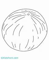 Cantaloupe Template Melon Coloring sketch template