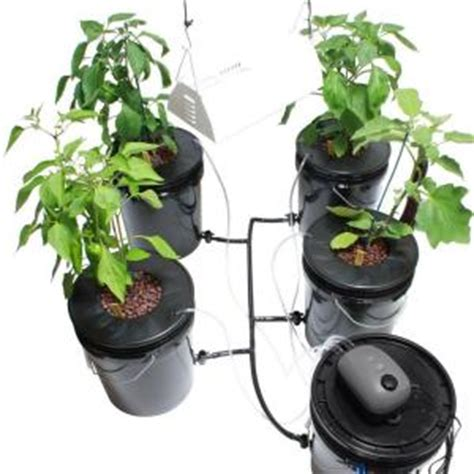 viagrow hydroponic black water and grow light