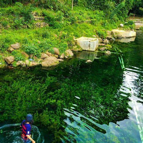 Walau harga tiket masuk telaga sarangan dirasa terlalu mahal, akan. TOP 15 Tempat Wisata Lampung 2020, Taman Bunga, Pantai ...