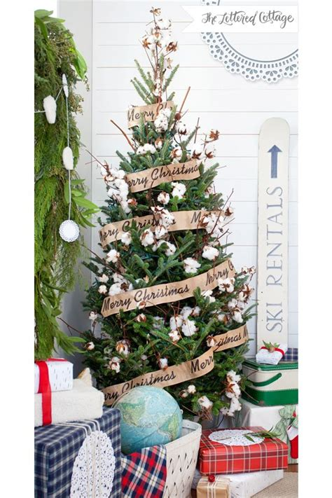 1000 images about cotton stems on pinterest trees
