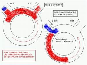 Spatiotemporal Dynamics Of Reentry Termination By Pacing