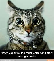 You Drink Too Much Coffee Memes