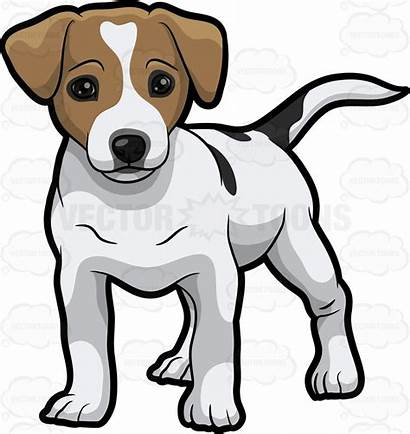 Russell Jack Clipart Terrier Russel Drawing Cartoon