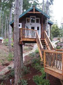 tree houses you can live in for sale design of your house its idea for your