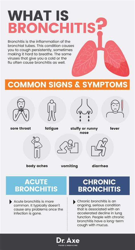 Bronchitis Signs & Symptoms + Natural Remedies  Dr Axe. Botanic Garden Signs. Food Allergy Signs. Relapse Prevention Signs Of Stroke. Faucet Signs Of Stroke. 19 Week Signs Of Stroke. Opioids Signs. Holiday Closed Signs Of Stroke. Mental Breakdown Signs Of Stroke