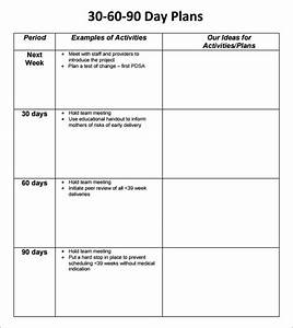 30 60 90 day plan template 8 free download documents in With free 30 60 90 day sales plan template download