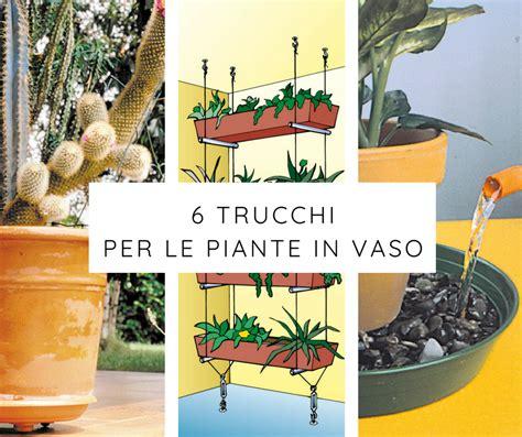 vasi per piante fai da te 6 trucchi per le piante in vaso fai da te in giardino