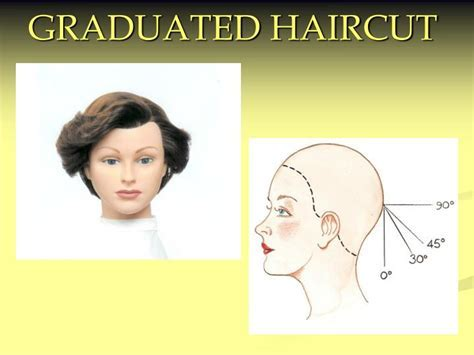 PPT   GRADUATED HAIRCUT PowerPoint Presentation   ID:357355