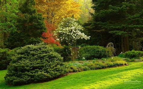 Garden Wallpaper by Garden Wallpapers Wallpaper Cave