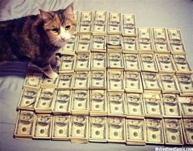 money cat money cat 15 jpg 171 myconfinedspace