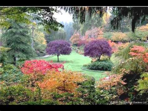 Garden Picture by Beautiful Flower Garden