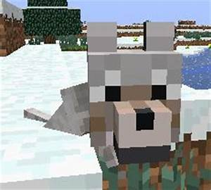 Minecraft wolf on Pinterest | Minecraft Wolf, Minecraft ...