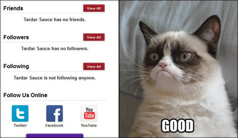 No Grumpy Cat Meme - image gallery no meme grumpy kitty