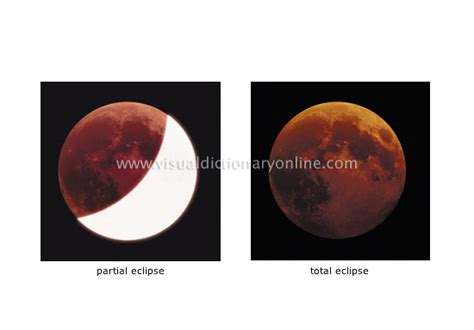 astronomy celestial bodies moon types  eclipses