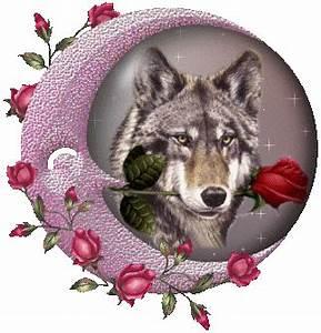 """""""Dori lynn wolf"""" / """"lynn marie wolf cherry hill ohio"""""""