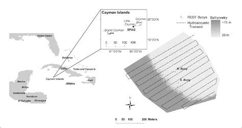 grouper nassau cayman spawning aggregation islands survey site little island publication