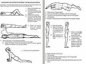 Pics For > Scoliosis Stretching Exercises