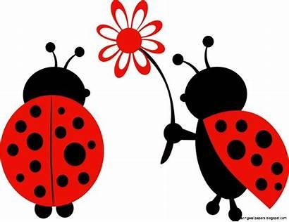 Ladybug Clipart Ladybugs Clip Lady Bug Flower