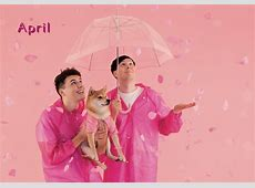 Presenting the dan and phil and dogs 2018 calendar