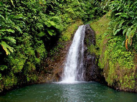 green, Nature, Trees, Waterfalls Wallpapers HD / Desktop ...