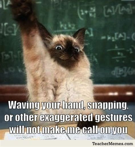 Funny Classroom Memes - best 25 math memes ideas on pinterest math memes funny minion meme and memes