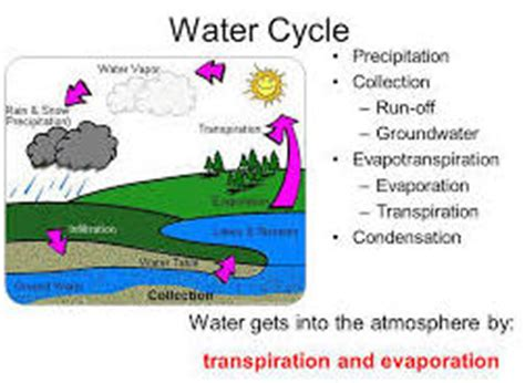 lesson plan of evaporation and condensation general science grade v effective and creative