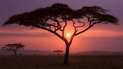 African Sunset Wallpapers 1920 1080