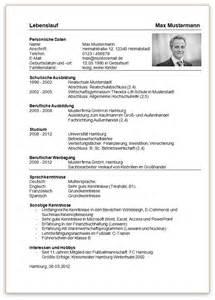 resume template professional designer resume 1000 images about lebensläufe on pinterest