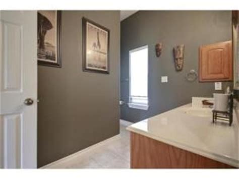 sherwin williams eclipse grey color neutral