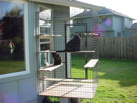 25 best ideas about outside cat enclosure on