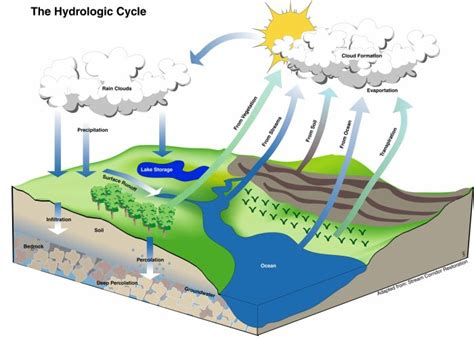 water cycle diagram pictures