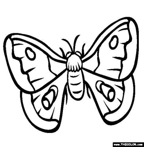 insect  coloring pages page