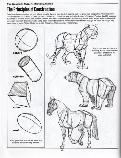 images  quads  pinterest traditional