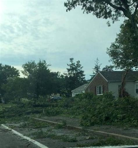 fierce storm knocks  power damages trees homes