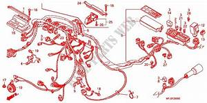 Wire Harness  Battery For Honda Cbr 600 Rr 2008   Honda