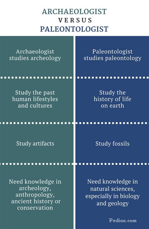 Difference Between Archaeologist And Paleontologist