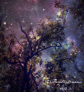 Galaxy Tree by NarcoticxDreams on DeviantArt