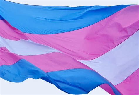 trans flag colors the history of the transgender flag point 5cc