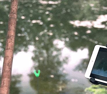 fishing bobber camera lets   underwater