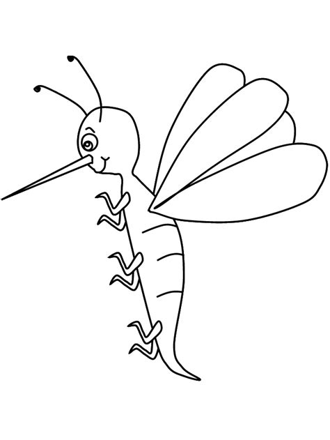 mosquito animals coloring pages coloring book