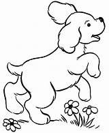 Coloring Puppy Poodle Printable sketch template
