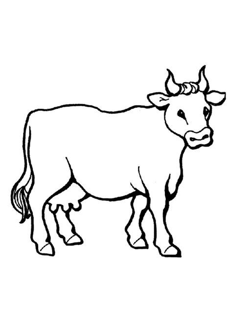 dessins de coloriage vache  imprimer