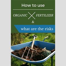 How To Use Organic Fertilizer And What Are The Risks Getgardentipscom