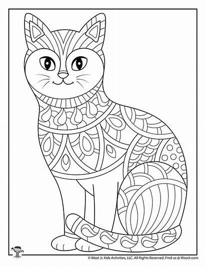Coloring Teen Teens Adults Animal Activities Cat