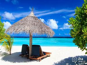 Homes For Rent By Owners Cat Island Rentals For Your Vacations With Iha Direct