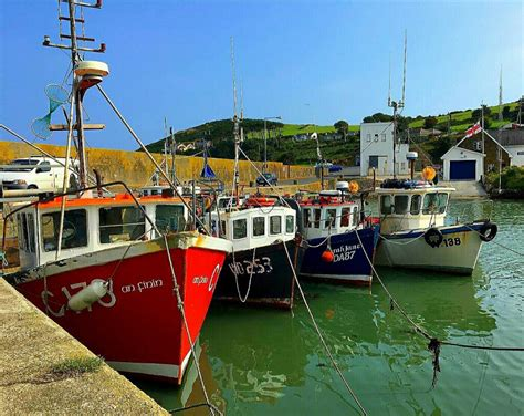 Find A Fishing Boat In Ireland by Helvick Head Waterford Ireland Fishing Boats In