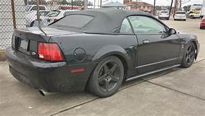 Autotooner's 99 Cobra - The Mustang Source - Ford Mustang Forums
