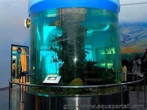 Plexiglas Aquarium Nach Maß : plexiglass d finition et explications ~ Watch28wear.com Haus und Dekorationen